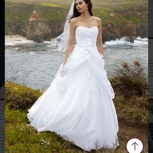 David's Bridal Tulle Ball Gown with Lace-Up Back